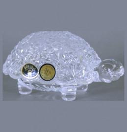"шкатулка 12 см ""черепаха"" / 104636"