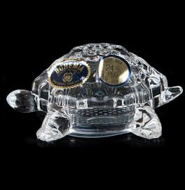 """прибор для специй солонка 7,4 см """"черепаха"""" / 029827"""